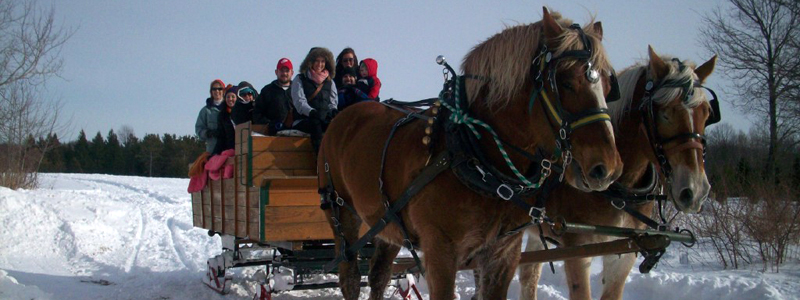 Photo of Hay and Sleigh Rides 16