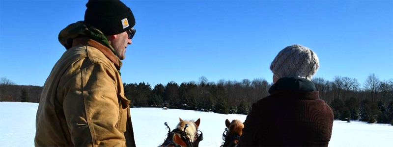 Photo of Hay and Sleigh Rides 20