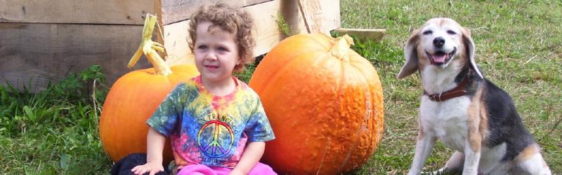 Pumpkin Patch 5